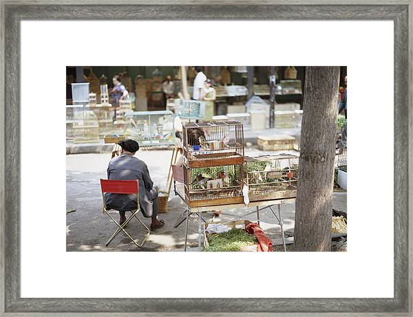 Paris Bird Market Framed Print