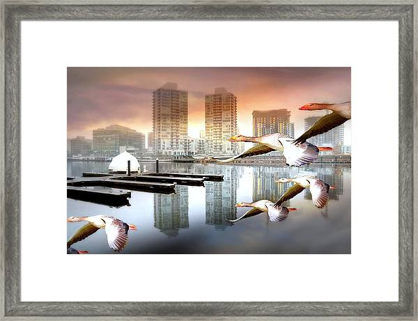 Park Place Framed Print