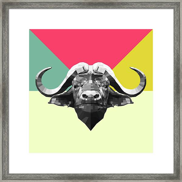 Party Buffalo Framed Print