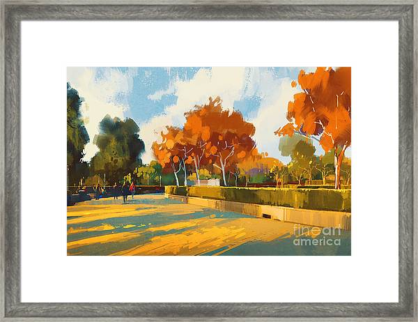 Path In The Autumn Park,landscape Framed Print
