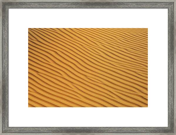 Patterns In The Sand In Wahiba Sands Framed Print