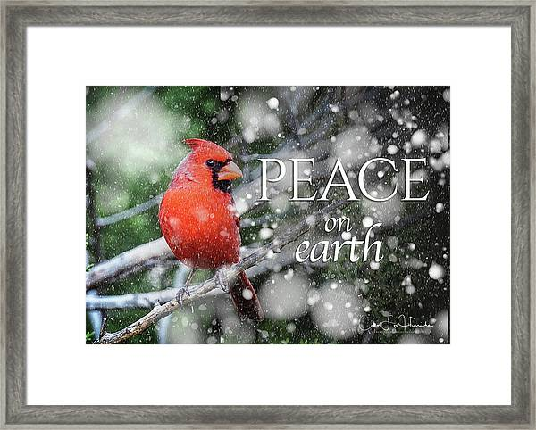 Peace On Earth W/cardinal Framed Print
