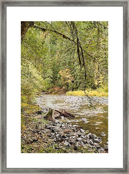 Peaceful Molalla River Framed Print