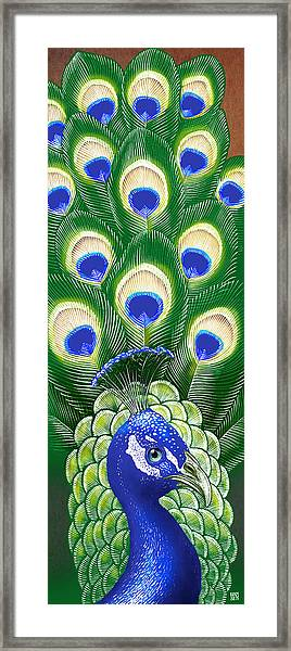 Framed Print featuring the drawing Peacock by Clint Hansen