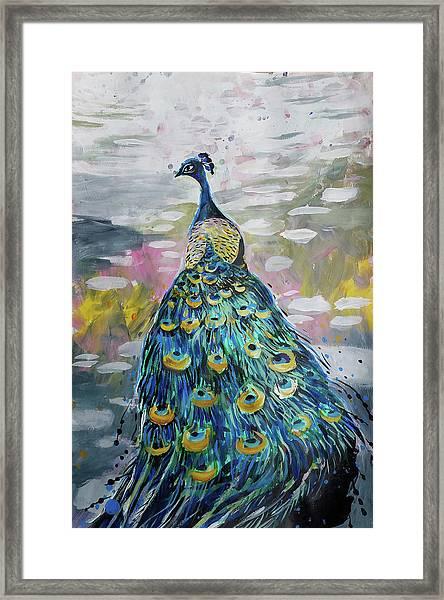 Peacock In Dappled Light Framed Print