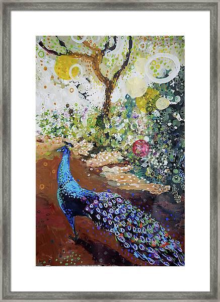 Peacock On Path Framed Print