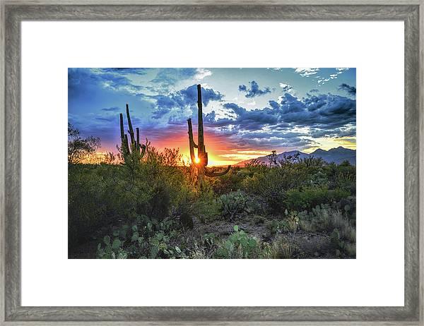 Framed Print featuring the photograph Tucson, Arizona Sagurao Sunset by Chance Kafka