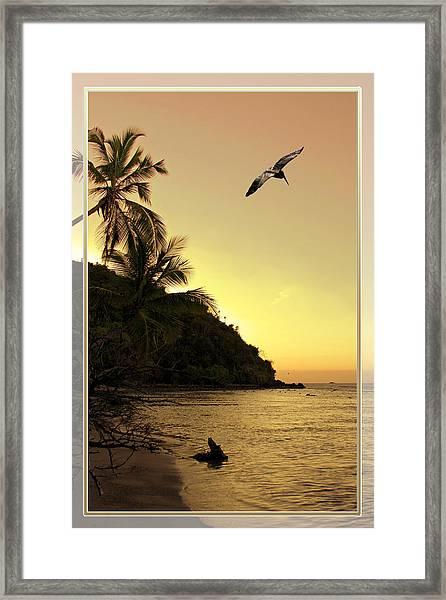 Pelican Sundown Framed Print