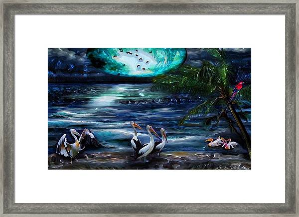 Pelicans On The Shore Framed Print