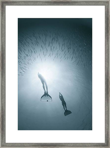 People Diving Deep In Water Framed Print