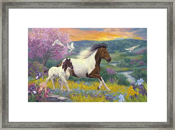 Perfect Spring Day Framed Print