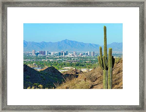 Phoenix Skyline Framed By Saguaro Framed Print