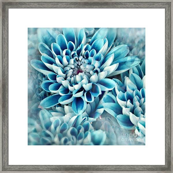 Photo Illustration Of Abstract Flower Framed Print