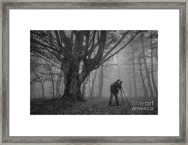 Photographer With Camera And Tripod Framed Print