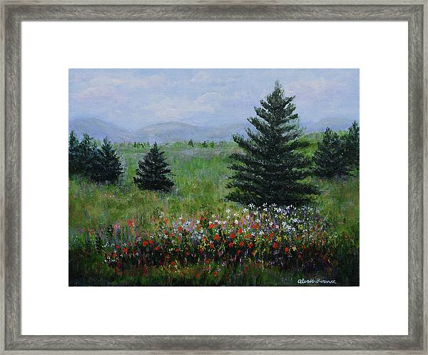 Pines And Wildflowers Framed Print
