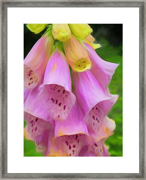 Pink Bells Framed Print