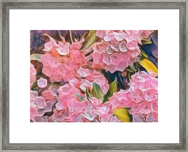 Pink Bougainvillea Framed Print