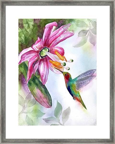 Pink Flower For Hummingbird Framed Print