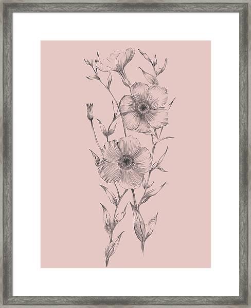 Pink Flower Sketch Illustration I Framed Print