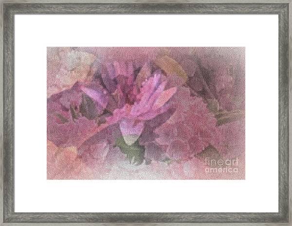 Pink Haze Framed Print