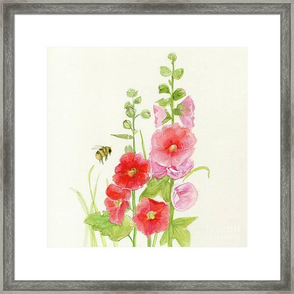 Pink Hollyhock Watercolor Framed Print