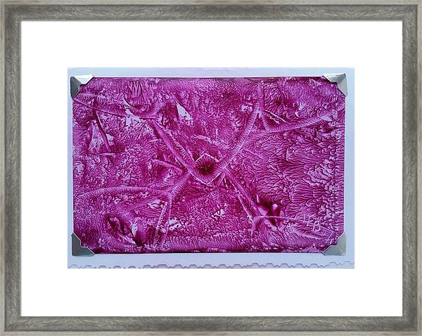 Pink Triangles Framed Print