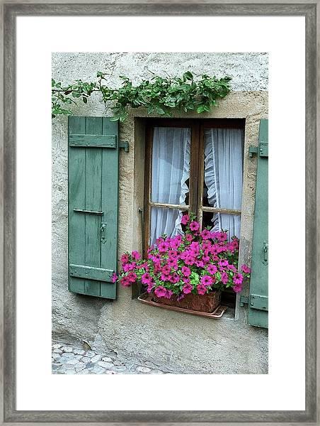 Pink Window Box Framed Print