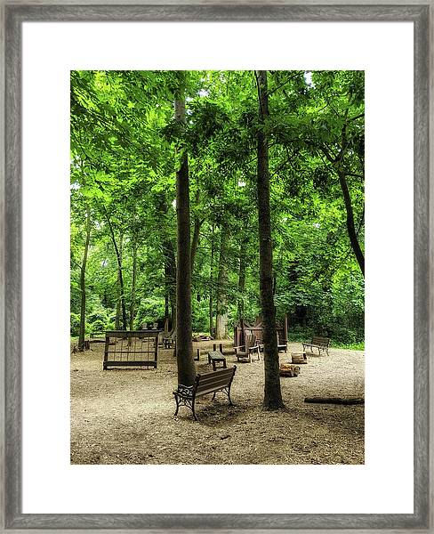 Play In The Shade Framed Print
