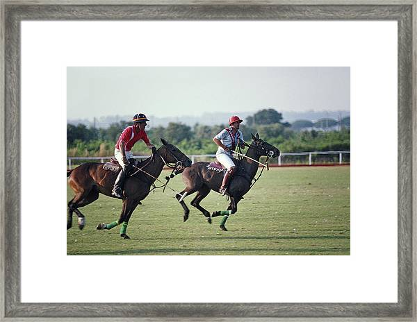 Polo In Italy Framed Print by Slim Aarons