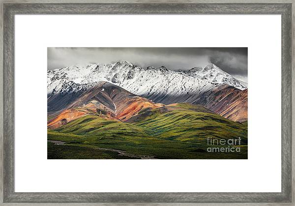 Polychrome Mountain, Denali Np, Alaska Framed Print