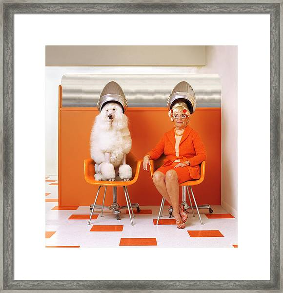 Poodle And Senior Woman Sitting Under Framed Print