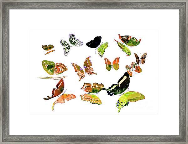 Pop Art Tropics Framed Print