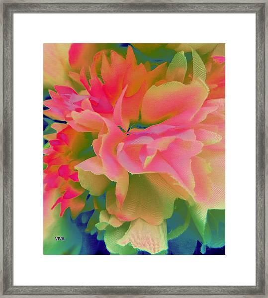 Pop Peony Petals Framed Print