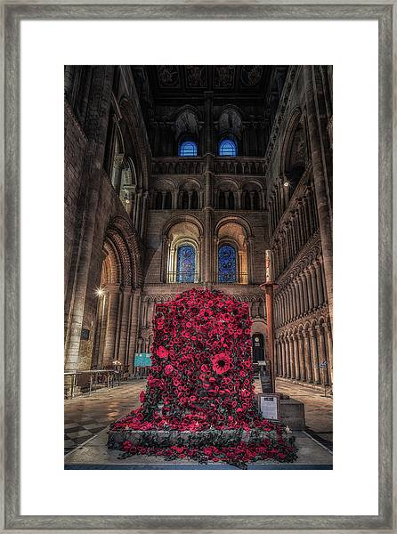 Poppy Display At Ely Cathedral Framed Print