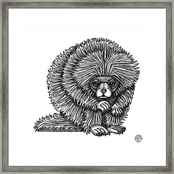 Framed Print featuring the drawing Porcupine by Amy E Fraser