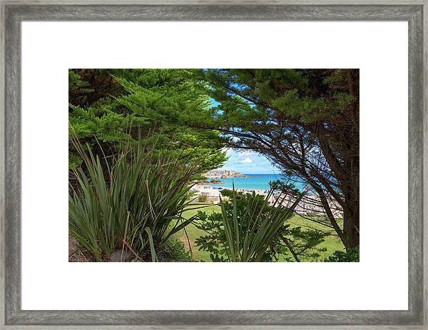 Porthminster Behind The Trees - St Ives Cornwall Framed Print