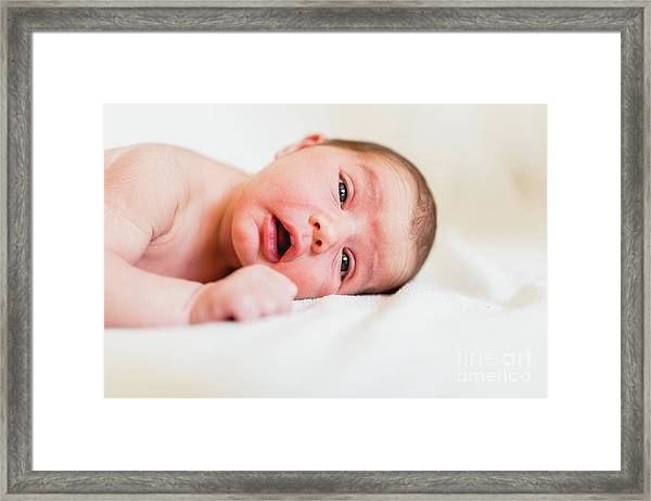 Portrait Of Newborn Baby Girl Feels Safe And Awake To A New Life. Framed Print