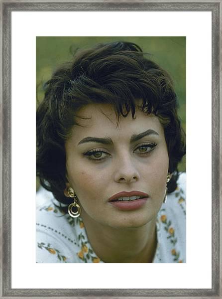 Portrait Of Sophia Loren Framed Print by Loomis Dean