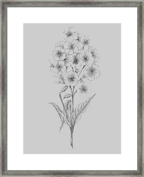 Pretty Flower 3 Framed Print