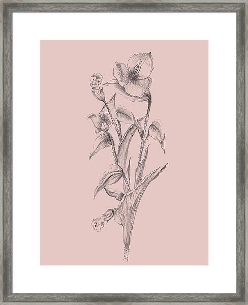 Pretty Pink Flower I Framed Print