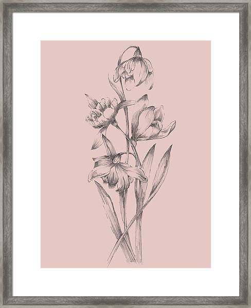 Pretty Pink Flower II Framed Print