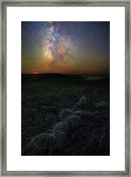 Pricked  Framed Print