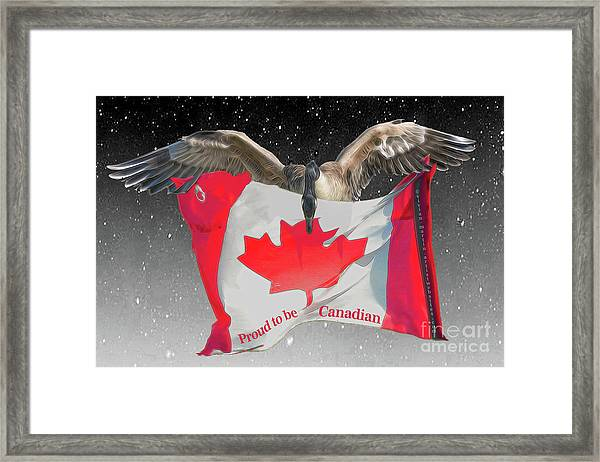 Proud To Be Canadian Framed Print