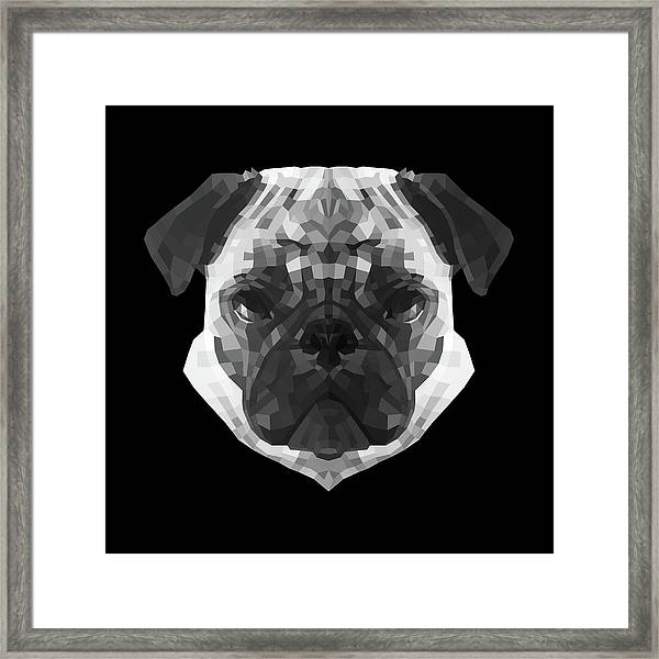 Pug's Face Framed Print