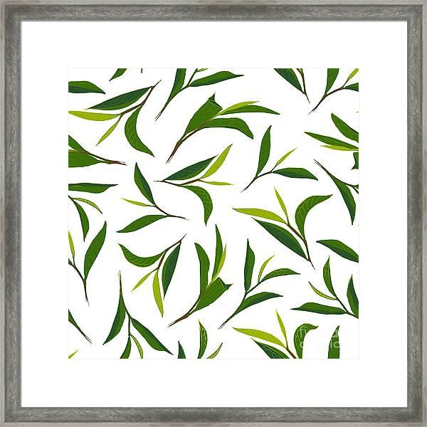 Pure Tea. Botanical Style Seamless Framed Print by Irache