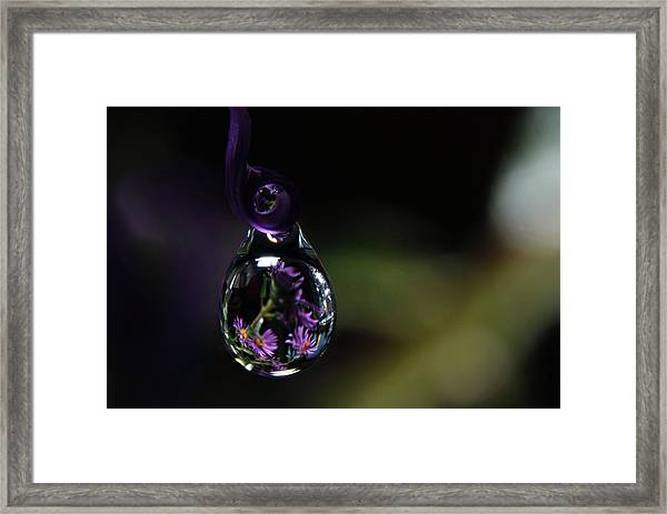 Purple Dreams Framed Print