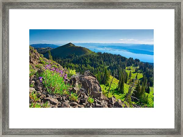 Purple Vista Framed Print