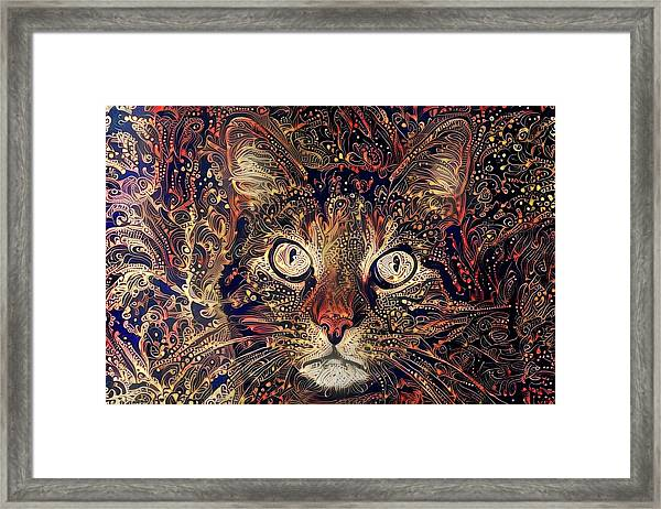 Mystic In Paisley Framed Print