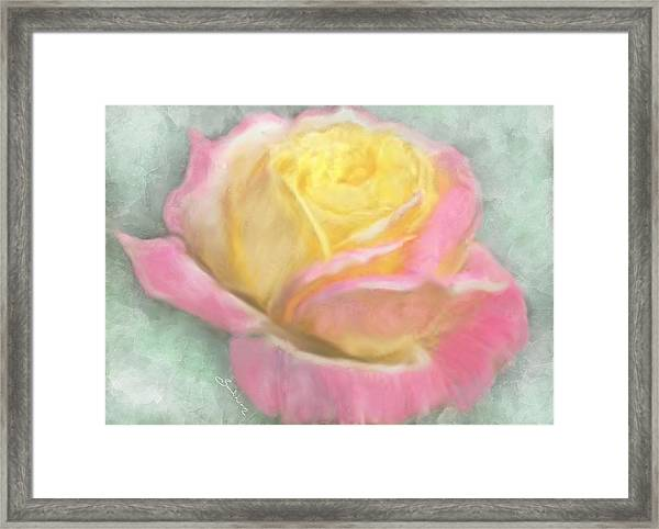 Queen Bella Rose -  I Care Framed Print