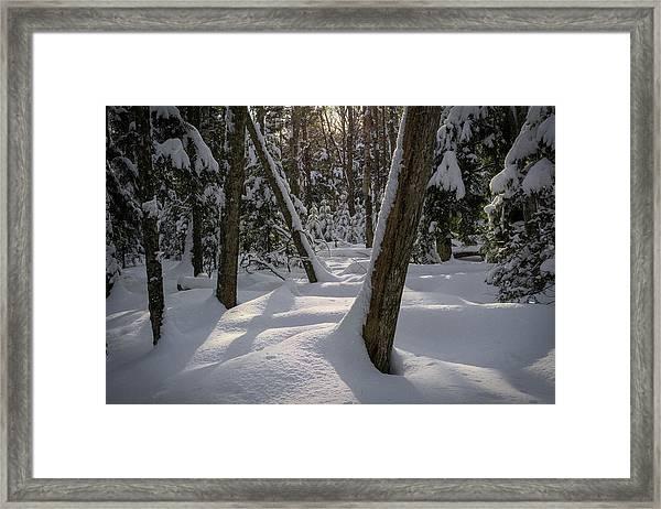 Quiet Framed Print